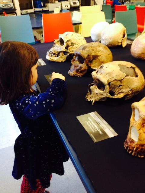 skulls and preschooler